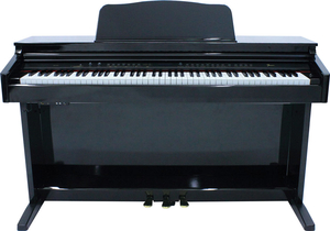 Piano Digital Fenix DP 310 *OUTLET*