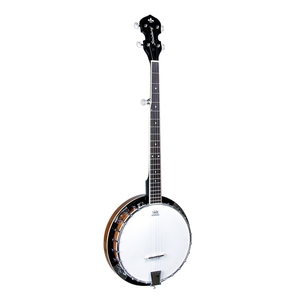 Banjo Strinberg WB 50 5 Cordas Country