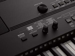 Teclado Yamaha PSR EW 410